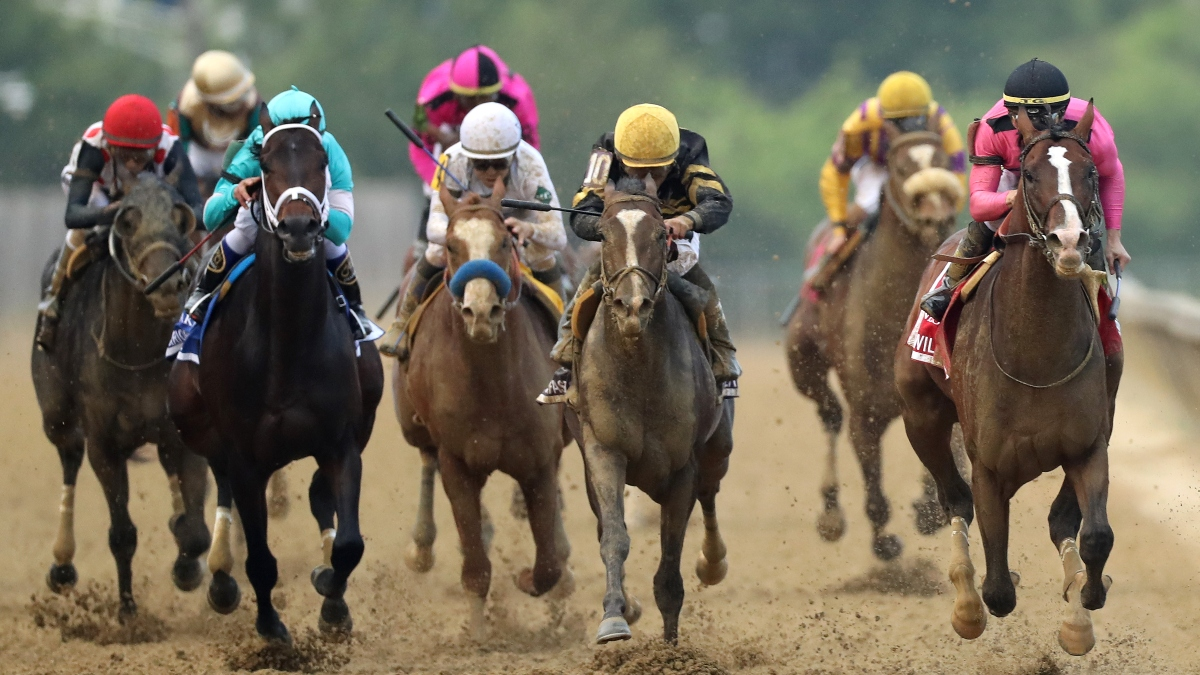 2020 Preakness Stakes Promotion, Best Bet and Longshot article feature image