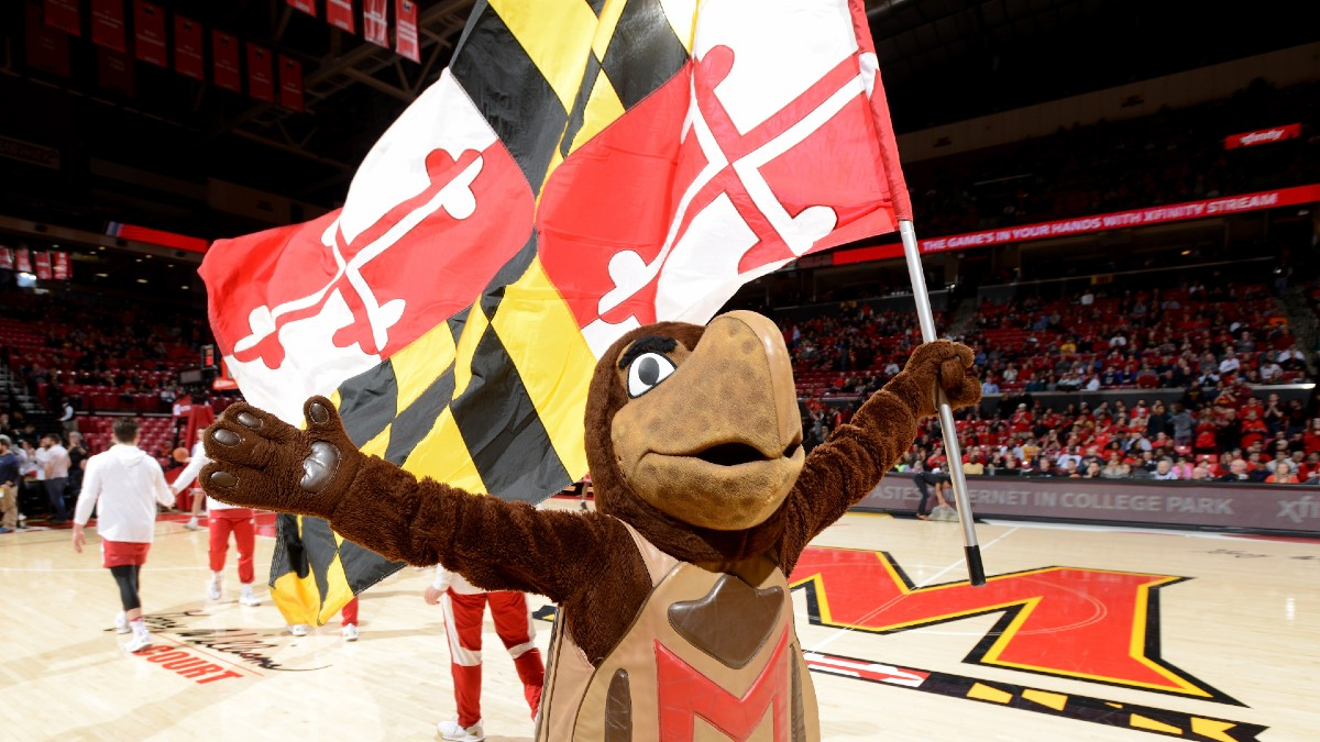 Maryland Sports Betting Approved By Voters article feature image