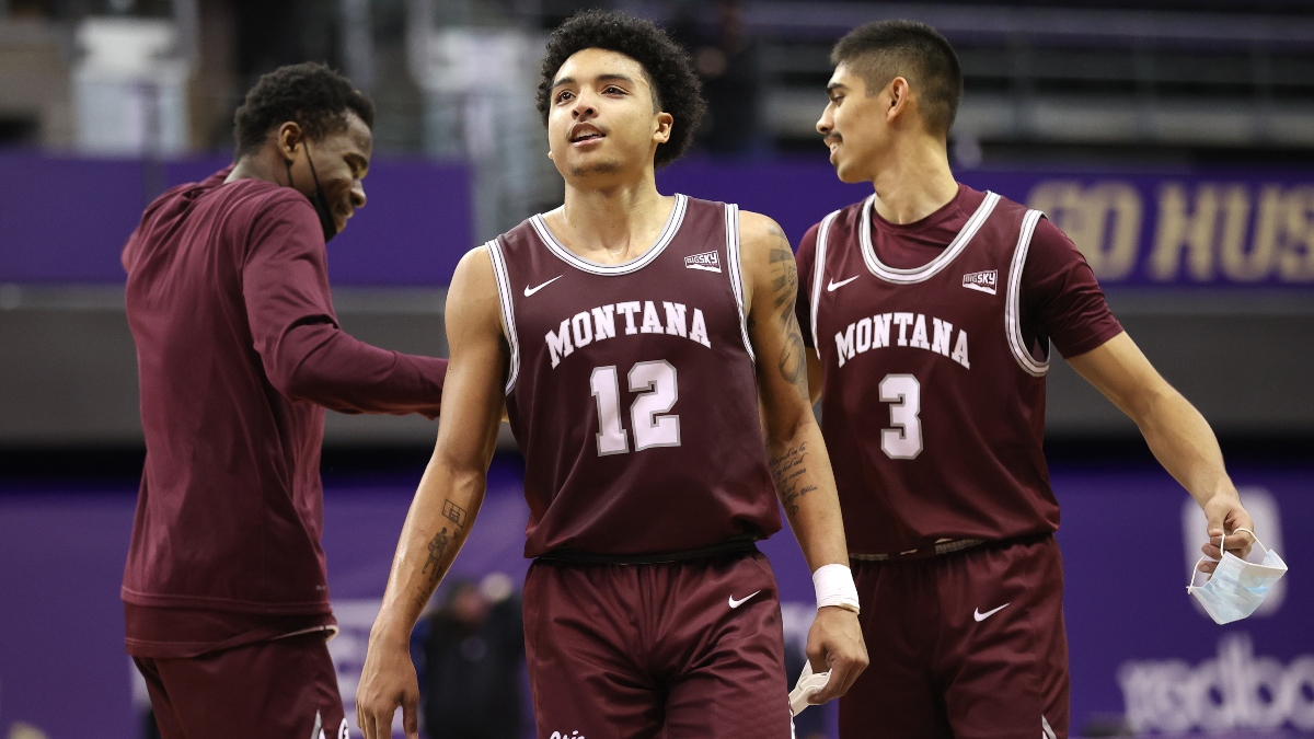 Northern Colorado vs. Montana Odds, Picks: Sharps Betting Monday's College Basketball Spread article feature image